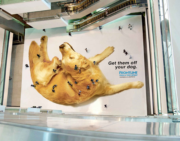 Get Them Off Your Dog 35+ Creative advertising For Creative  Peoples