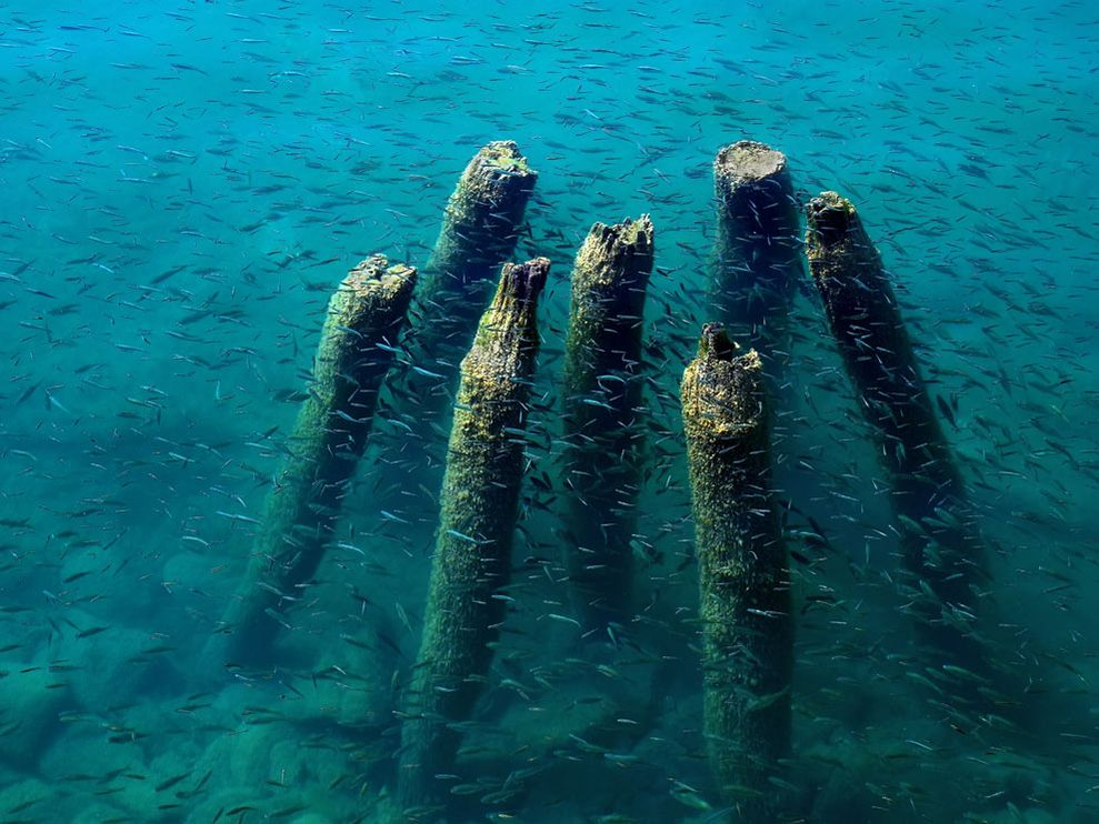 Lake Ohrid Dock Remains