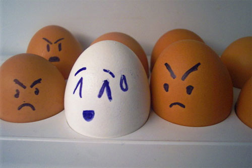 egg12 30 Funny and Clever Emotions Egg Photography by Artist