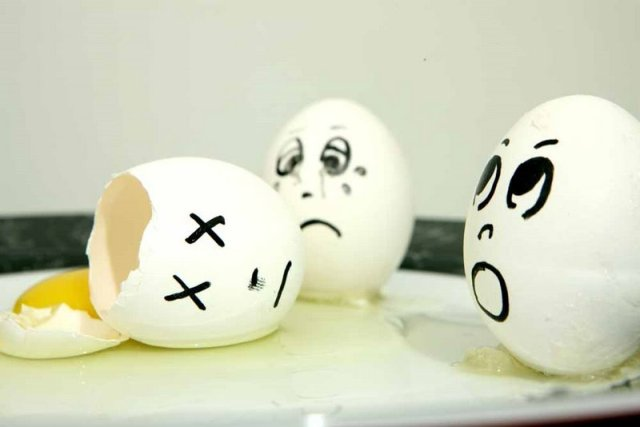 egg28 30 Funny and Clever Emotions Egg Photography by Artist