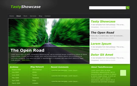 Tastyshowcase 20+ Free Premium WordPress Themes of January 2010
