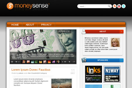 moneysense 20+ Free Premium WordPress Themes of January 2010