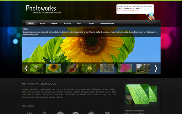 photoworks 20+ Free Premium WordPress Themes of January 2010