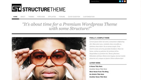 structuretheme 20+ Free Premium WordPress Themes of January 2010